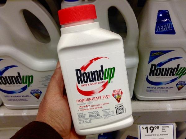 Glyphosate : stop ou encore ?