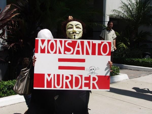 Les OGM, un débat impossible?