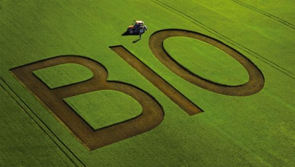 L'agriculture bio peut-elle nourrir la planète ?