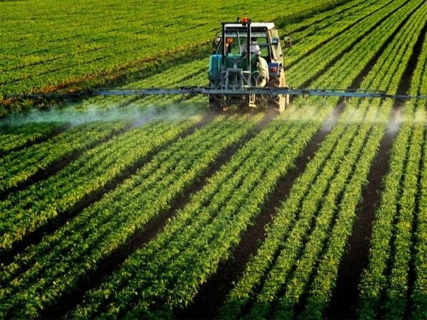 Pesticides : les réduire ne diminue pas nécessairement la productivité et la rentabilité