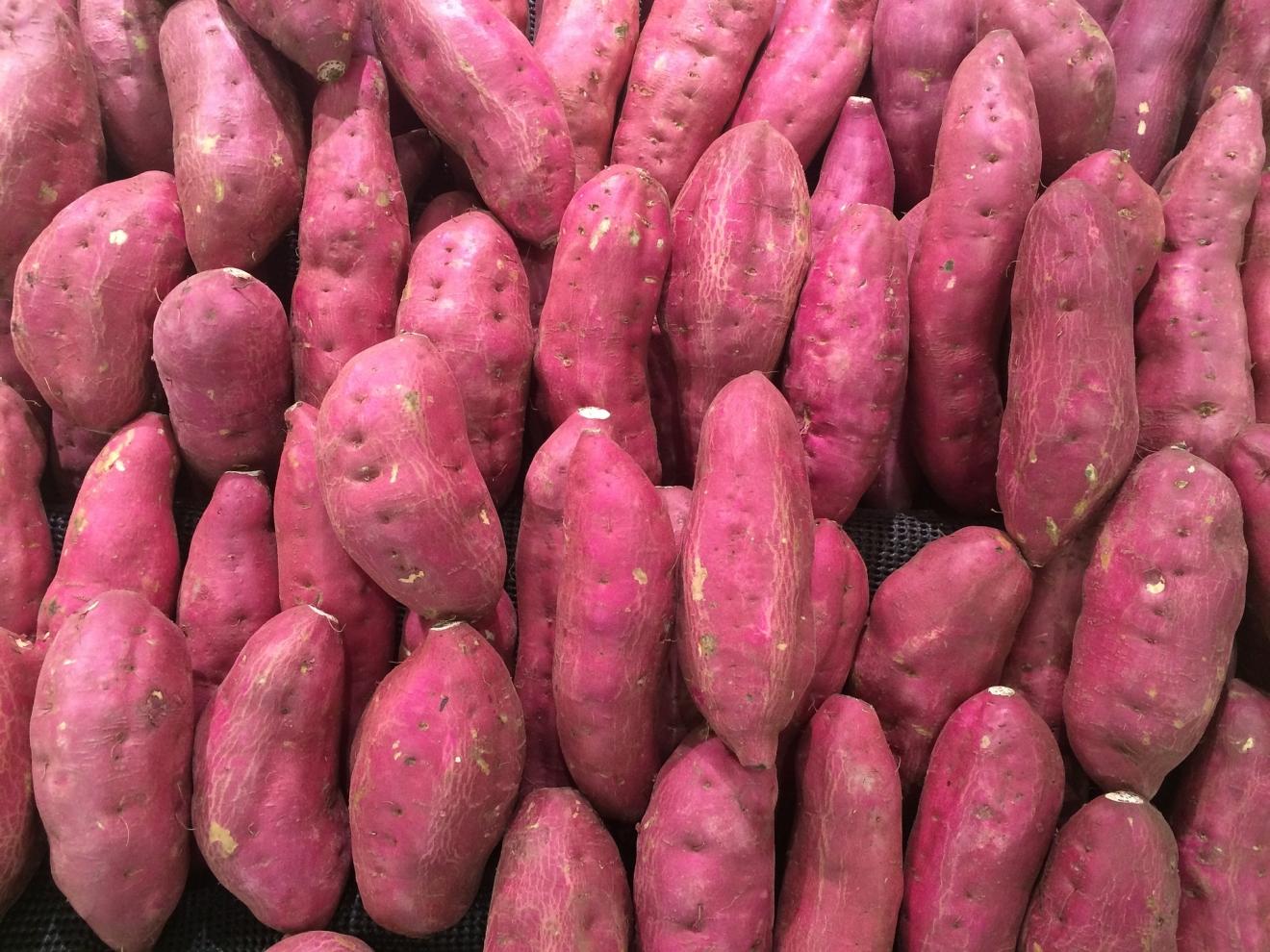 La patate douce, un tubercule longtemps méprisé mais indispensable