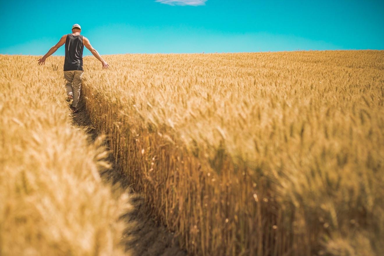 Encourageons les agriculteurs au lieu de les dénigrer